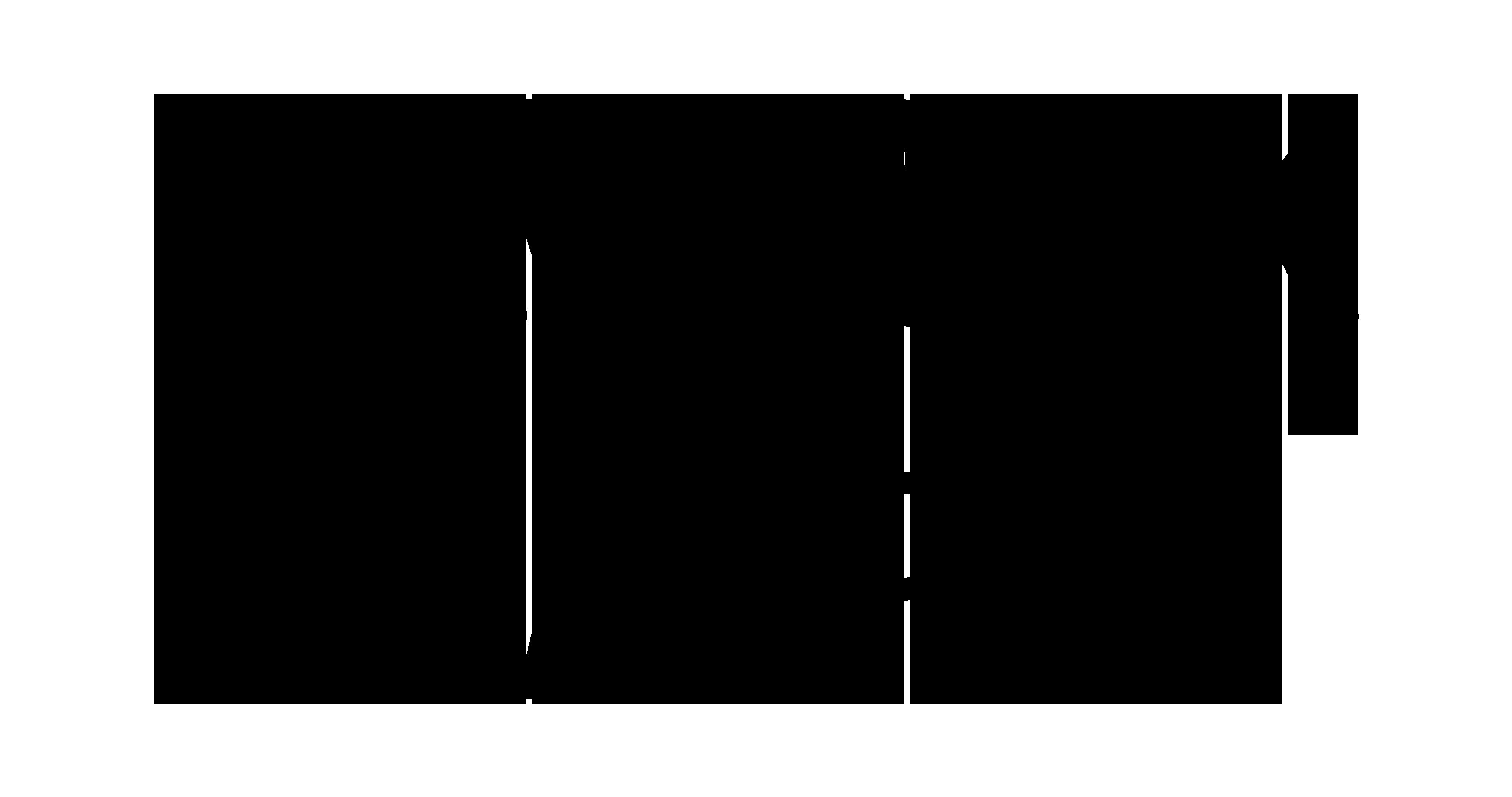 Maverick Sabre